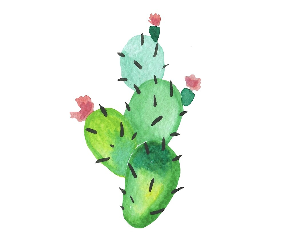 Quot Cute Watercolor Cacti Quot By Mariamirnaya Redbubble