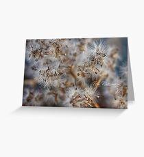 Flower hazard Greeting Card