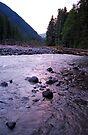 Lavender Creek by Tori Snow