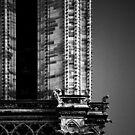shot on film .. gargoyles of notre dame by badduck09
