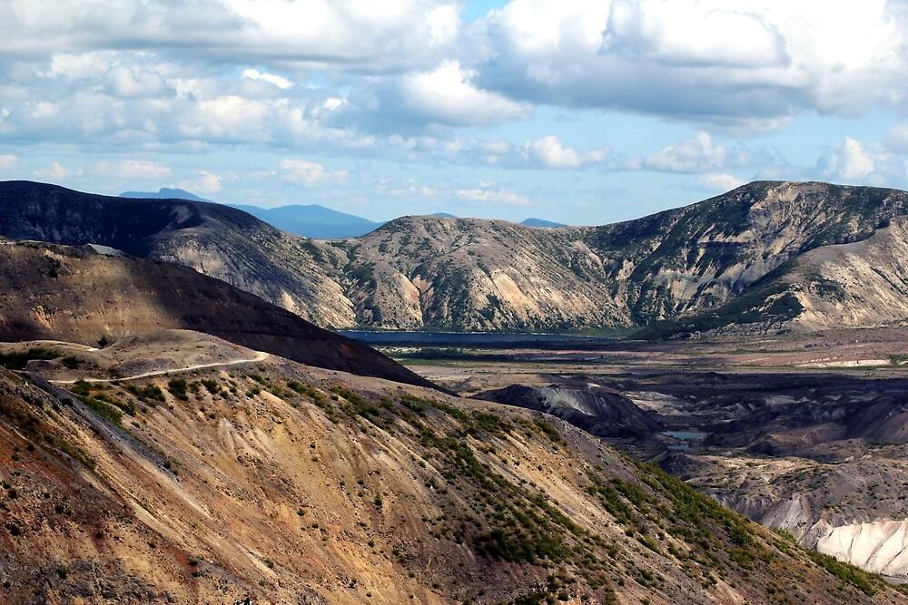 Lake and mountain view near Johnston's Ridge by Dawna Morton
