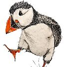 Abstract Pen and Watercolor Puffin by Leliza