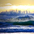 Pacific spectacular by Patricia Gibson