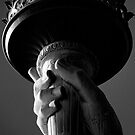 shot on film .. liberty's grip by badduck09