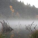 Halloween Foggy Reflections 1 by CarrieAnn