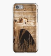 Photographers Shooting Photographers iPhone Case/Skin