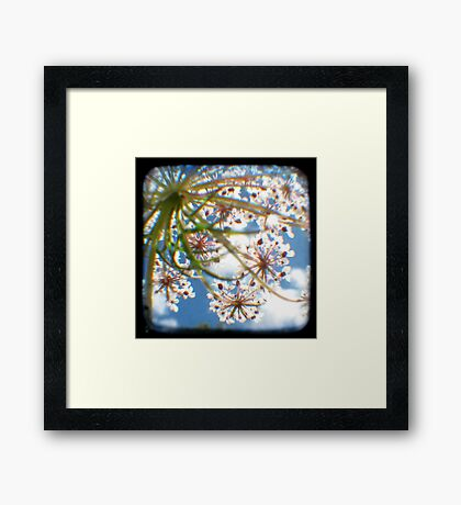 Look Up Through The Viewfinder Framed Print