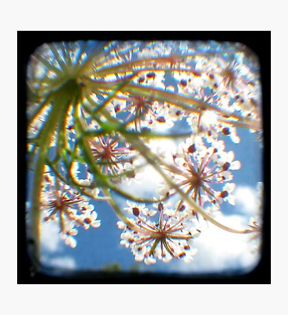 Look Up Through The Viewfinder Photographic Print