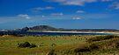 Mt Cameron, Marrawah, NW Tasmania by Garth Smith