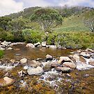 High Country Mountain Stream by Richard  Windeyer