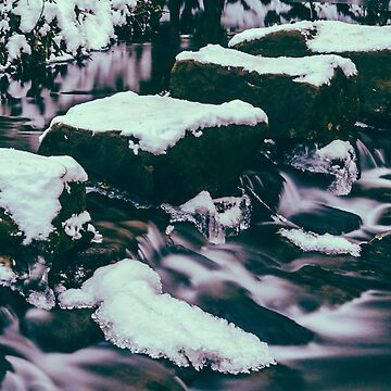 Endcliffe Park Stepping Stones in the Snow by shanerounce