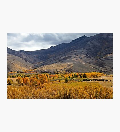 Autum on the Ranch Photographic Print