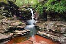 Amazing Hues Of Adams Falls by Gene Walls