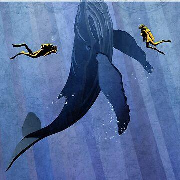 Whale Scuba divers by SFDesignstudio