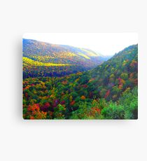 Autumn's Glory Metal Print