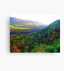 Autumn's Glory Canvas Print