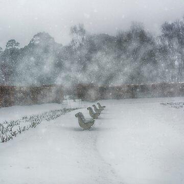 Snow in Dublin by babibuba
