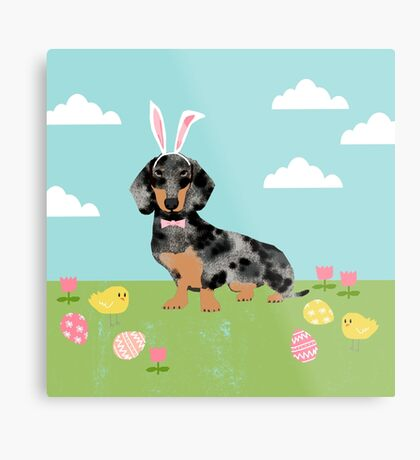 Dachshund dog breed easter pet portrait dog breed gifts pure breed dachsie doxie dapple Metal Print