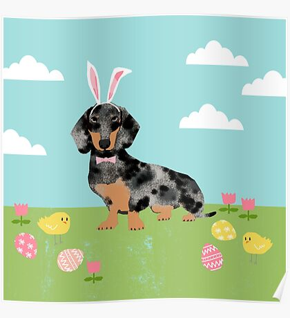 Dachshund dog breed easter pet portrait dog breed gifts pure breed dachsie doxie dapple Poster