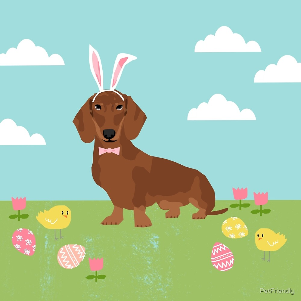 Dachshund dog breed easter pet portrait dog breed gifts pure breed dachsie doxie  by PetFriendly
