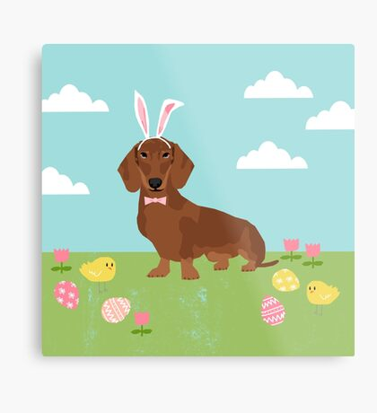 Dachshund dog breed easter pet portrait dog breed gifts pure breed dachsie doxie  Metal Print