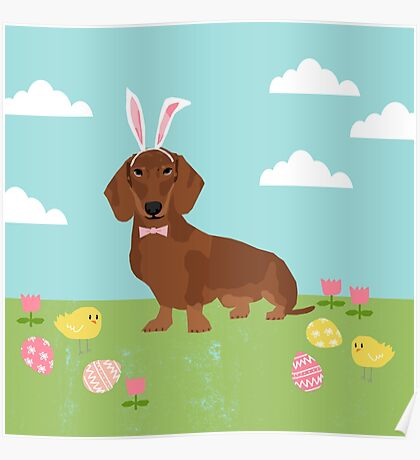 Dachshund dog breed easter pet portrait dog breed gifts pure breed dachsie doxie  Poster