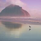 Morro by Kevin Bergen