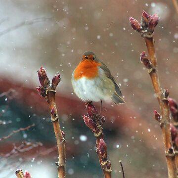 Snowfall by ViczS