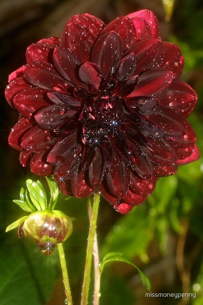 Red velvet by missmoneypenny