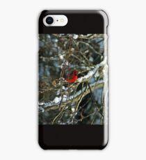 Poetic Winter iPhone Case/Skin