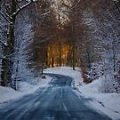 Road to the light by Antoine Beyeler