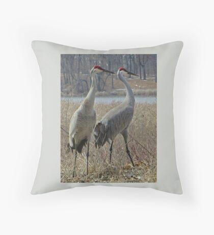 Cherokee Marsh Sandhill Cranes  Throw Pillow