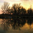 Reflection of my Realm by Evan Ludes