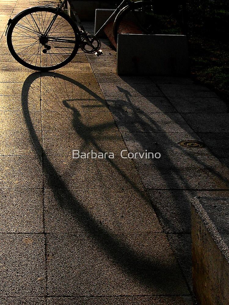 o...O by Barbara  Corvino