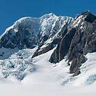 Mt Tasman by Vickie Burt
