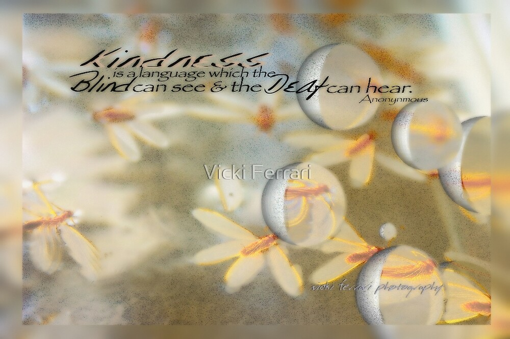 Kindness © Vicki Ferrari by Vicki Ferrari