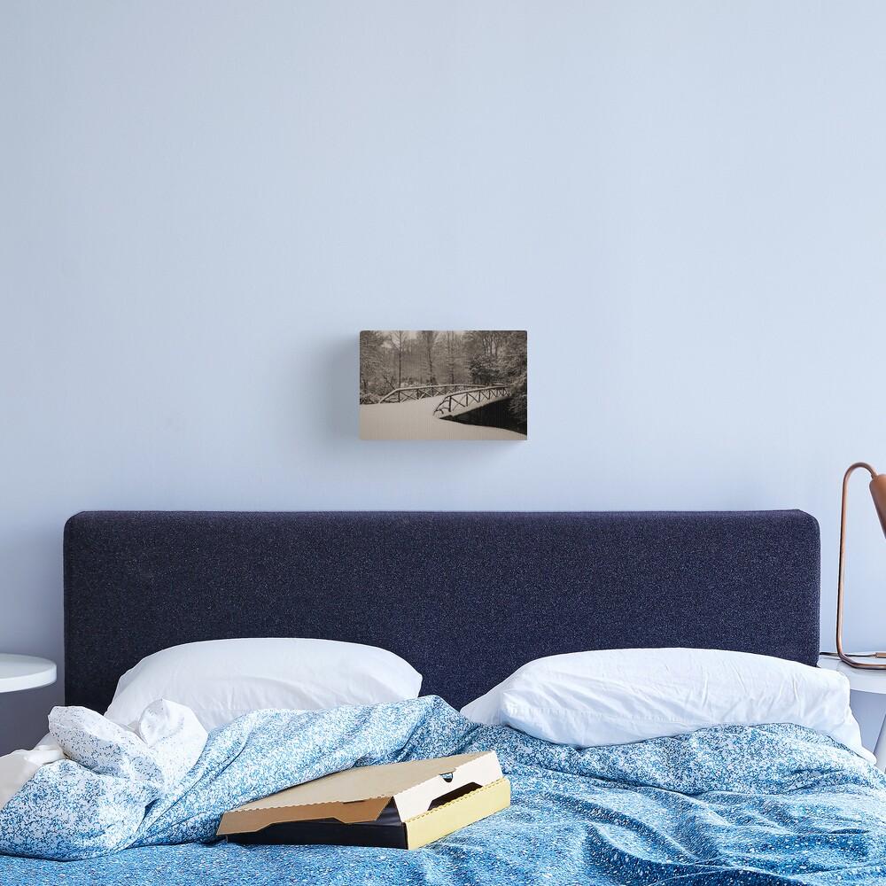 Untouched Canvas Print