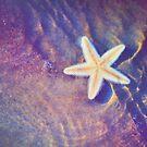 Sea Star. Memory of the Sunny Days in Tropics by JennyRainbow
