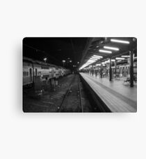 Central Station, Sydney. Canvas Print