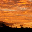Butterknowle Sunset by Angela Harburn