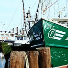 A Salty Dog /    Working fishing boats   by fiat777