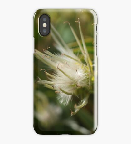 Clematis in the wild (1) iPhone Case