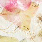 Hydrangea in Ice - 2 by Ann Garrett
