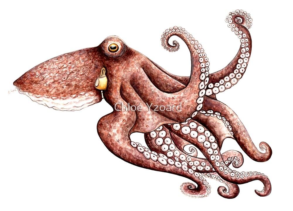 Octopus by Chloé Yzoard