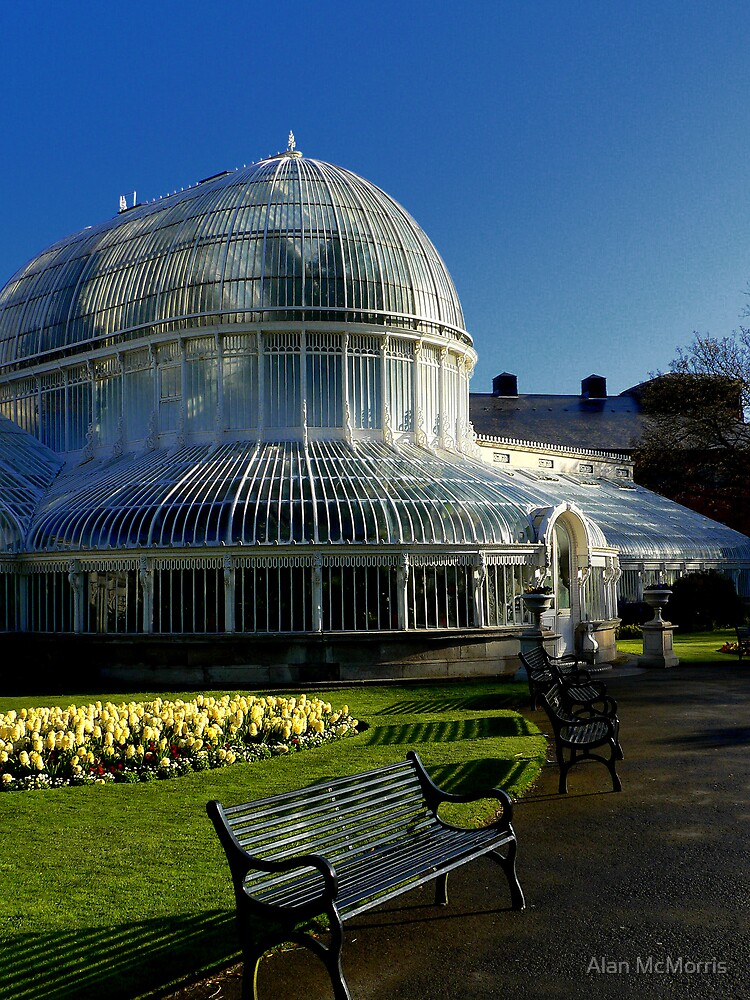 The Palmhouse by Alan McMorris