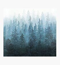 My Misty Secret Forest Photographic Print