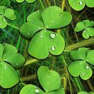 St Patrick's Lucky Shamrocks Clovers Greenery with Dew Drops by BluedarkArt