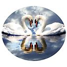 Mirrored Swans in Water with Cloud Effect by Artist4God