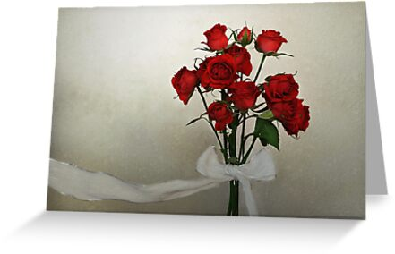 Scarlet Roses with White Ribbon by AnnieD