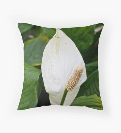 Bright White Throw Pillow